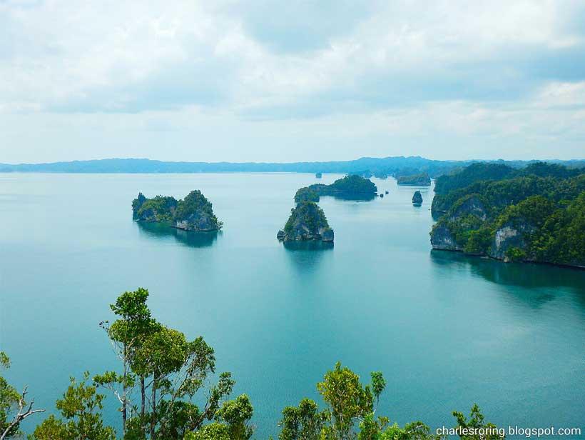 Segudang Destinasi Wisata Hijau Memesona di Papua yang Wajib Dikunjungi dan Dilindungi