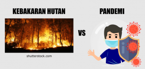Kaitan erak kebakaran hutan dengan pandemi-min