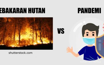 Kaitan Erat Pandemi vs Kebakaran Hutan dan Lahan! Kok Bisa Sih?