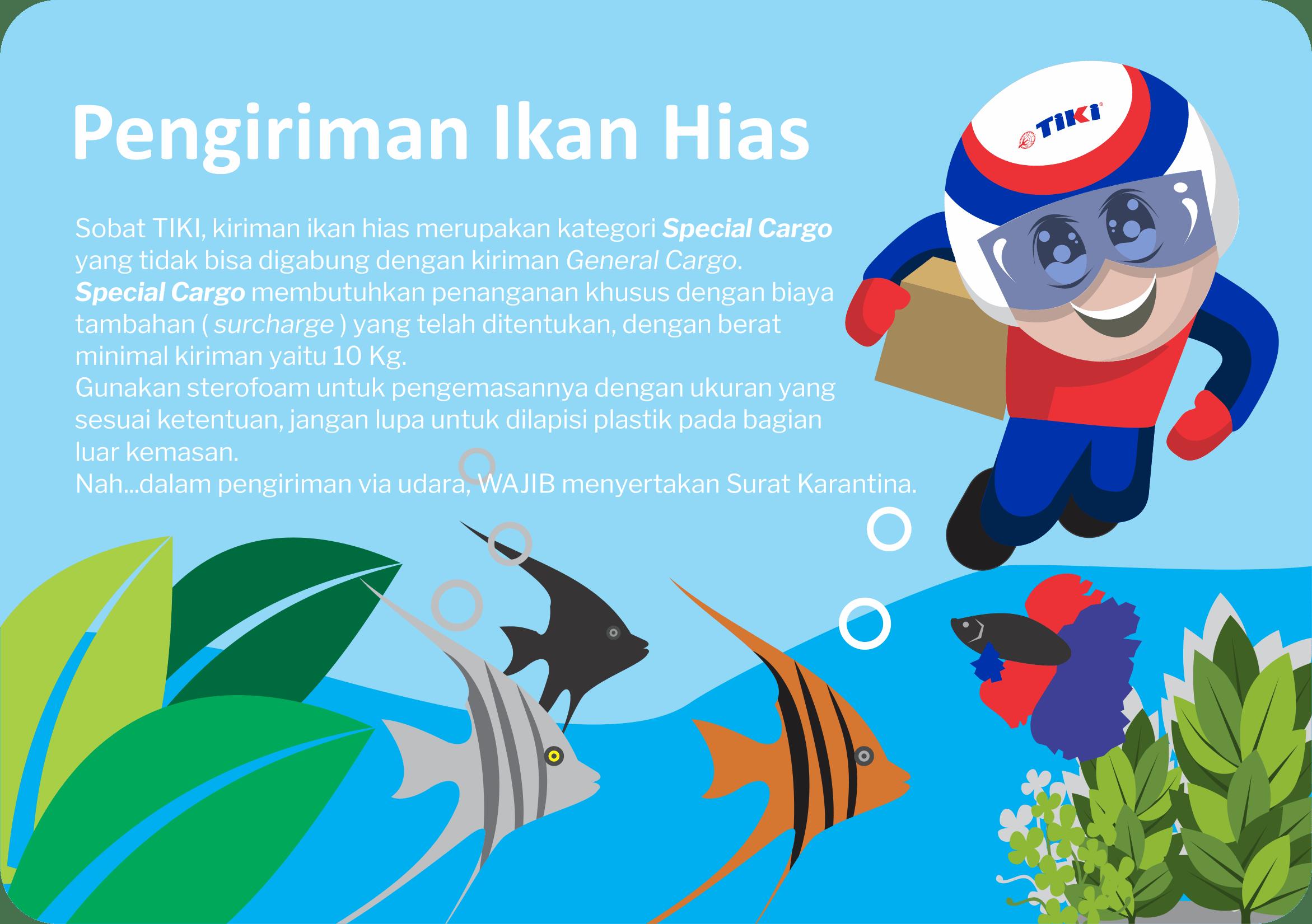 TIKI bisa kirim ikan hias