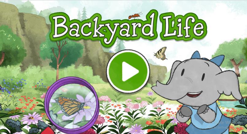 game-edukasi-untuk-anak-backyard-life